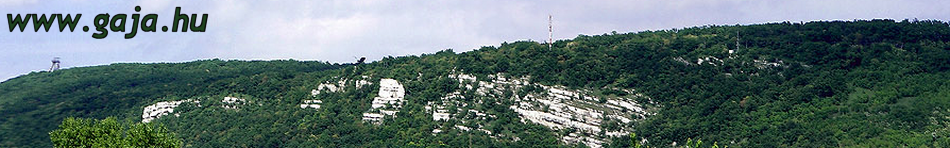 View from Tatabánya to the Kő-hegy (Stone Hill)